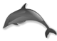 Smith logo: dolphin